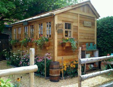 Tiny Home Gardening